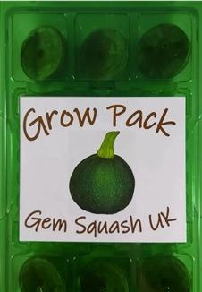 Gem Squash Grow Pack